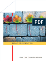 Budget Commmentary 2014