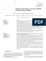 Analysis of Spatial Patterns of Oak Decline in Cork Oak Woodlands in Mediterranean Conditions