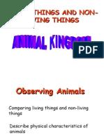 Preschool PPS 211-Animal Kingdom