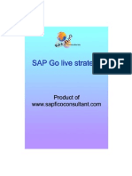 SAP Go Live Strategy