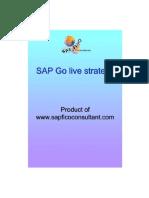 SAP Go Live Strategy