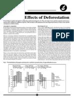 deforestation.pdf