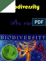 Biodiversity Meaning