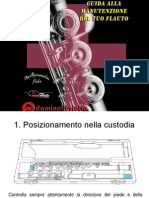 Guida DAMPI Alla Manutenzione Del Tuo Flauto