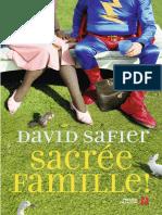Sacree Famille - David Safier