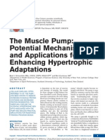 The Muscle Pump - Potential Mechanisms