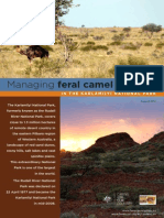 Managing Feral Camel Impacts