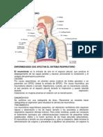 enfermedades de los SISTEMAs humanos.docx