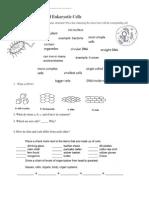 cell homework