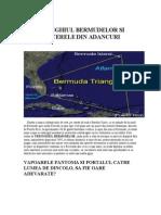 Articol Triunghiul Bermudelor