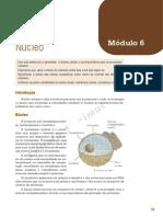 Eja Biologia Mod06-10 Ava