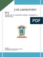 Informe de Laboratorio Nº2