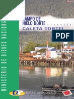 Campo de Hielo Norte Caleta Tortel - Ruta 12