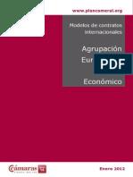 Modelo de Agrupacion Europea Interes Economico