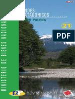 Andes Patagónicos Lago Palena - Ruta 21