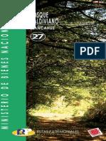 Bosque Valdiviano Llacahue - Ruta 27