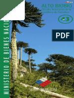 Altos del Bio Bio Araucarias de Pemehue - Ruta 43