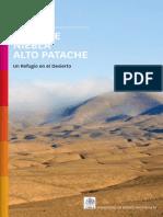 Oasis de Niebla Alto Patache Un refugio en el desierto - Ruta 57