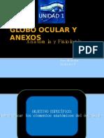 Globo Ocular y Anexos Anatomía