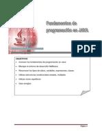 Manual Fundamentos Java