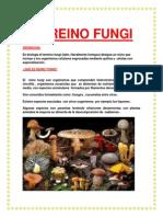 EL REINO FUNGI.docx