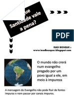 Santidade - vale pena.pdf