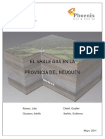 Shale Gas Prov Neuquen