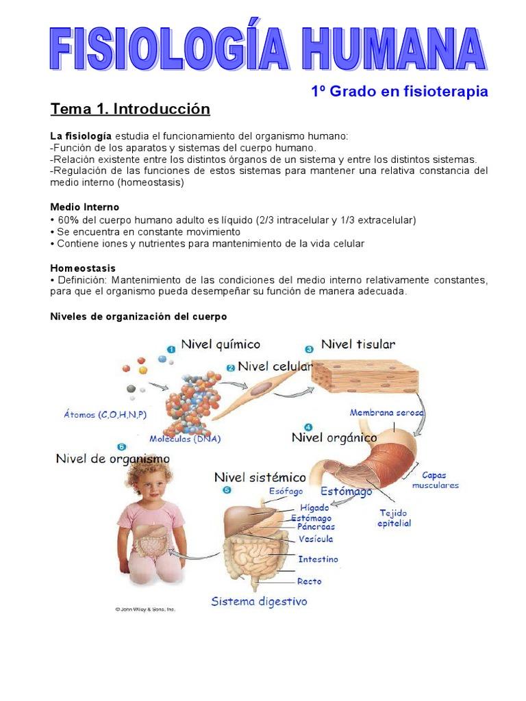 Fisiologia Humana Basica