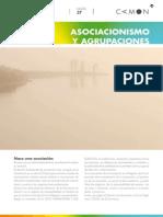 Sesion37 Asociacionismo y Agrupaciones