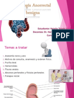Patología Anorrectal Benigna NATALIA TOLEDO URRA - Cirugía