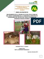 Proyecto de Cuyes Condebamba