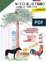 Diccionario Ilustrado Mapuche