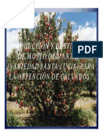 Diapos de La Manzana