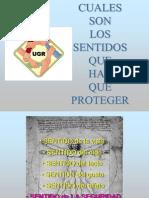 PROTECCION DE LOS SENTIDOS.ppt
