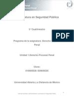 Unidad 1. Derecho Procesal Penal