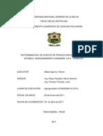 66462595 Deteerminacion de Costos de Produccion de Leche en Las Cuencas Lecheras de Lima