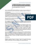 RM 148 2012-TR - Guia de formatos para la elección de representantes del comite de SST.pdf