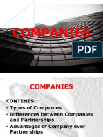 7. Introduction to Companies