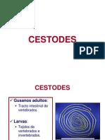 DIAPOSITIVAS_TEMA_43_CESTODES (1)