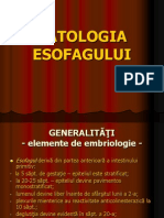 2+Patologia+esofagiana