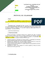 Model Protocol Colaborare