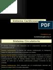 8. SISTEMA CIRCULATORIO