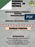 Exposicion de Sanidad Porcina Terminada Por La Morita