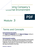 Analyzing Company's External Environment