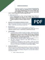 Terminos de Referencia Tupac Amaru Sector i
