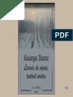 Banu, George - Livada de Visini, Teatrul Nostru