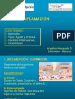 inflamacion_2009