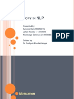 NLP and Entropy