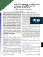 Lyso_Em_FRET_Grinstein_PNAS07.pdf
