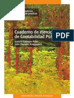 PREVIEW LIBRO Contabilidad Publica